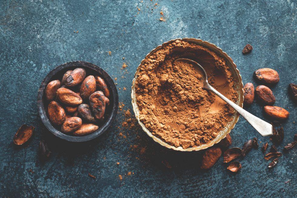 Kakao a mózg