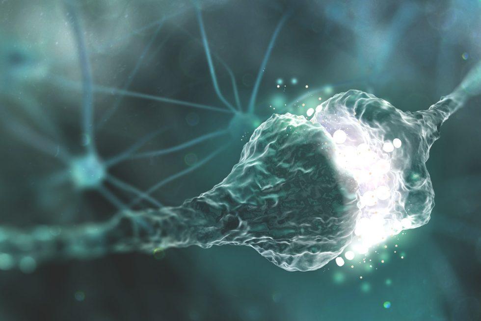 Ćwiczenia a neuroplastyczność